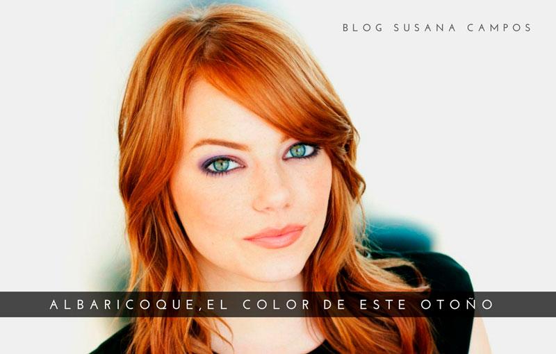 color albaricoque en el cabello